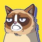 Сердитый Котик: ужасная игра MOD много денег