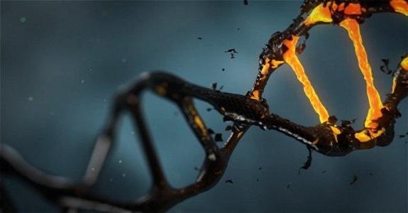 Китайские нанороботы положат конец раку