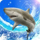 Wild Shark Fishing MOD много денег